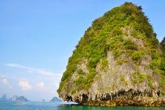 Rotsachtig die eiland, met installaties, in het overzees wordt behandeld Royalty-vrije Stock Fotografie