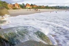Rotsachtig die strand door groen zeewier wordt behandeld Stock Fotografie