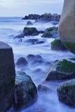 Rotsachtig die strand door zeewier wordt behandeld Stock Foto