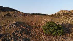 Rotsachtig gebied in oude bergen - Macin-Bergen - Roemeni? stock footage