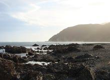 Rotsachtig kustlijn-I-Wellington-nieuw Zeeland Royalty-vrije Stock Foto's