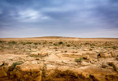 Rotsachtig landschap Stock Foto's