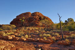 Rotsachtig landschap op plateau rond de Canion van de Koning Royalty-vrije Stock Fotografie