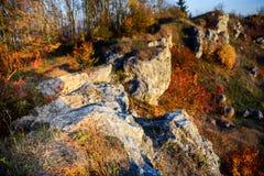 Rotsachtig landschap tijdens de herfst Mooi landschap met steen, bos en mist Het nevelige landschap van de avondherfst Landschap  Stock Foto