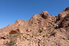 Rotsachtig landschap in Timna-park Stock Afbeelding