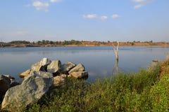 Rotsachtig meer met steen en dode boom Stock Afbeelding
