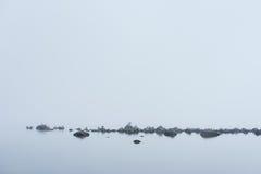 Rotsachtig strand, grote zwarte aalscholver, zeemeeuwen, en ochtendmist in de zomer Overzees, mist, vogels, kust, kust natuurlijk Royalty-vrije Stock Foto