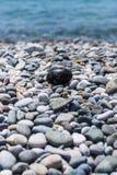 Rotsachtig Strand Kiezelsteen-als ei Stock Afbeelding