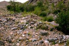 Rotsachtig terrein in de bergen van het Altai-Grondgebied Stock Afbeeldingen