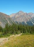 Rotsachtige berg en weide stock foto