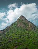 Rotsachtige bergbovenkant met gras en wolken Royalty-vrije Stock Foto's