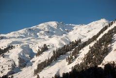 Rotsachtige bergen in de winter Royalty-vrije Stock Foto