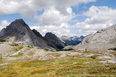 Rotsachtige bergen en weiden royalty-vrije stock afbeeldingen