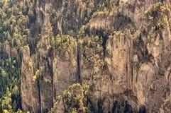 Rotsachtige bergtextuur Stock Foto
