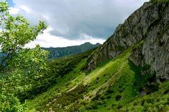 Rotsachtige die berghelling met gras wordt behandeld Stock Foto's