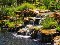 Rotsachtige die waterval door palmen wordt omringd Stock Afbeelding
