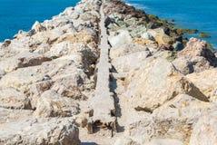 Rotsachtige golfbreker bij de Vreedzame Oceaan in Californië Royalty-vrije Stock Foto's