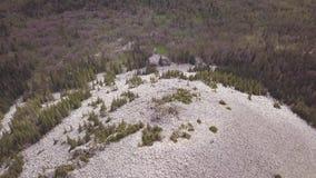 Rotsachtige heuvel die met witte stenen over gemengde bosklem wordt uitgestrooid Satellietbeeld van Russisch landschap stock video
