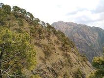 Rotsachtige heuvels 7 royalty-vrije stock foto's