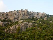 Rotsachtige klip, bergbomen en blauwe hemel Royalty-vrije Stock Foto
