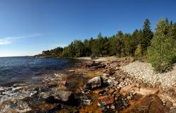 Rotsachtige kust met bos Royalty-vrije Stock Afbeeldingen