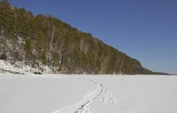 Rotsachtige kust van de bevroren rivier stock foto's
