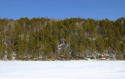 Rotsachtige kust van de bevroren rivier met lange pijnboombomen royalty-vrije stock afbeeldingen