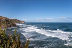 Rotsachtige kust van Tasman-overzees, Nieuw Zeeland Royalty-vrije Stock Foto