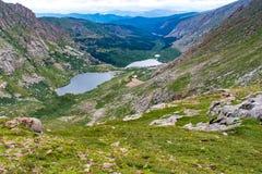 Rotsachtige MT Evans Colorado van het berglandschap Royalty-vrije Stock Afbeelding