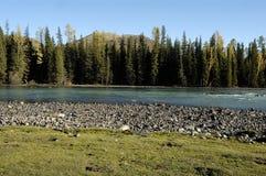 Rotsachtige rivier Stock Afbeelding