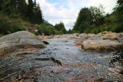 Rotsachtige rivier in Noorwegen Stock Foto's