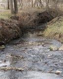 Rotsachtige rivieroever stock fotografie