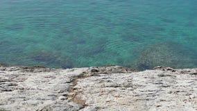 Rotsachtige stranden en duidelijke blauwe overzees in Makarska stock video