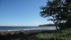 Rotsachtige vulkanische strandstrand en golven stock videobeelden
