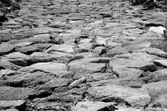 Rotsachtige Zwart-witte Weg - Stock Fotografie