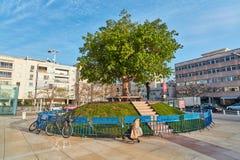 Rotschild st特拉维夫- 2017年3月04日:cen的Habima广场 免版税库存图片