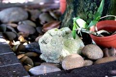 Rotsdier in de tuin Royalty-vrije Stock Foto's