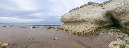 Rotsen bij het overzees at low tide Royalty-vrije Stock Foto's