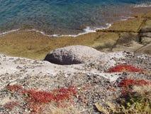 Rotsen bij het strand Royalty-vrije Stock Fotografie