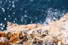 Rotsen bij kust van Adriatische overzees, Middellandse-Zeegebied, close-up Lucht hoogste mening van overzeese golven die rotsen o Stock Afbeeldingen