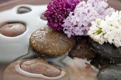 Rotsen, bloemen, en water Stock Fotografie