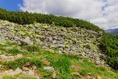 Rotsen in de bergen Stock Foto