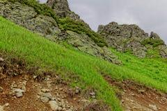 Rotsen in de bergen Stock Foto's