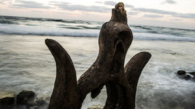 Rotsen door het overzees Stock Foto