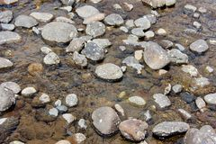 Rotsen in een rivierbed Stock Foto