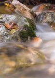 Rotsen in een stroom Stock Afbeeldingen