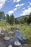 Rotsen in een windende rivier Royalty-vrije Stock Afbeeldingen