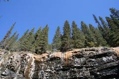 Rotsen en bomen Royalty-vrije Stock Foto's