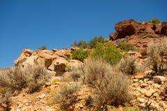 Rotsen en flora in de woestijn stock foto