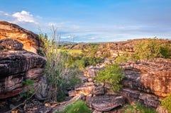 Rotsen en Gombomen - het Nationale Park van Kakadu royalty-vrije stock foto